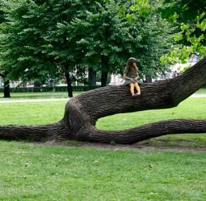 arbrefille